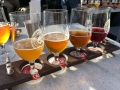 Ballast Point flight